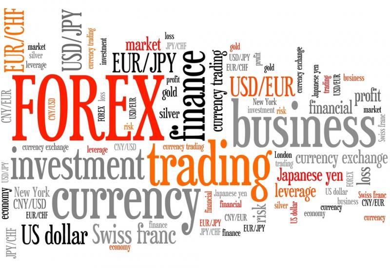 Foreign exchange economics