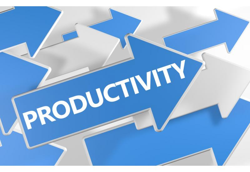 Productivity begins with productive workers.