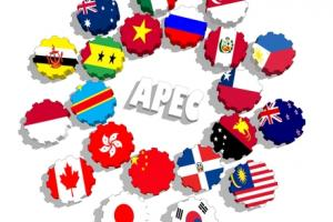 China determined to make the next APEC summit a success