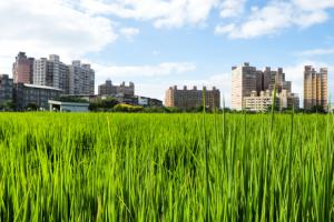 Stricter controls will keep cities from expanding into farmland.