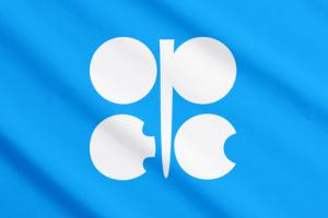OPEC's 2015 forecast is for continued weak demand