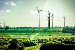 The financial sector should embrace green investment.
