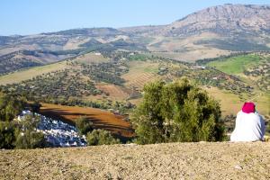 Good land governance has cut down on land-grabbing.