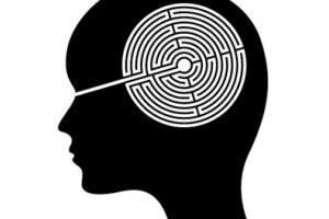 Brain Maze: Inside The Mind