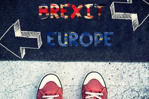 Demographics paint an interesting Brexit picture.