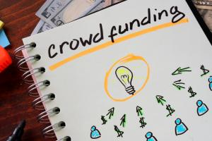 Crowdfunding reached the mainstream, but didn't leave big risks behind.