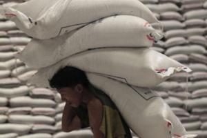 Indian worker carries sacks of grain at wholesale market.