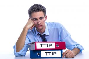 The TTIP is a big deal with many agreements still to be agreed upon.