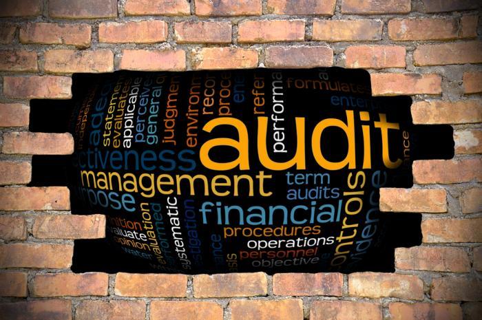 Naming Names on Financial Audits | Economy Watch