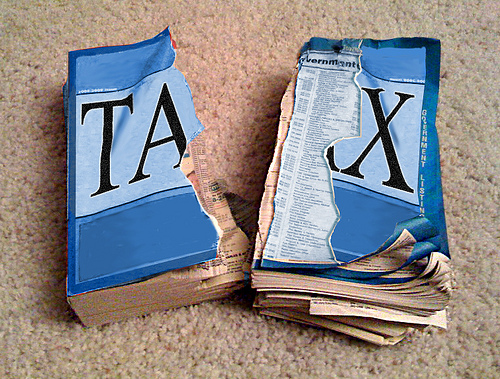 Flat-Lining The Flat Tax: Mitchell Orenstein