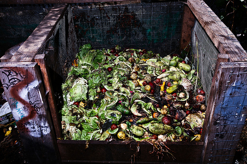 Food Waste Fiasco: Breaking The Gordian Knot Of The World's Food Supply