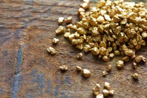 Fool for Gold: Why the Precious Metal Remains a Barbarous Relic: Nouriel Roubini