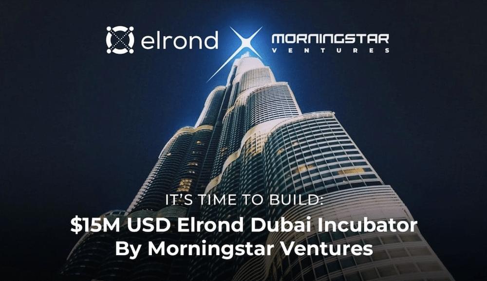 elrond morningstar ventures investment